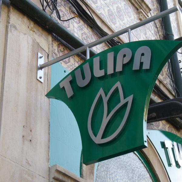Letreiros Neolux - Tulipa